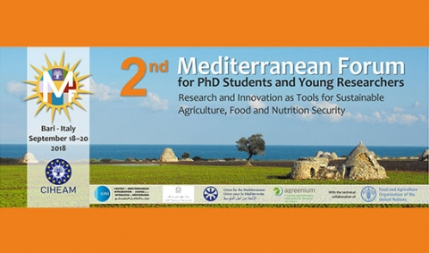 second-mediterranean-forum