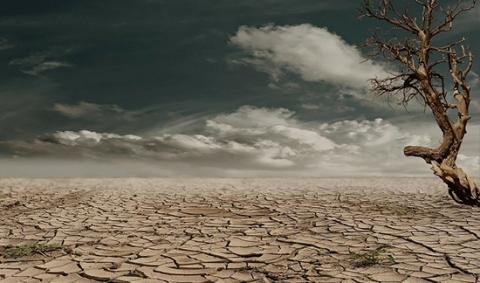 zone-desertique