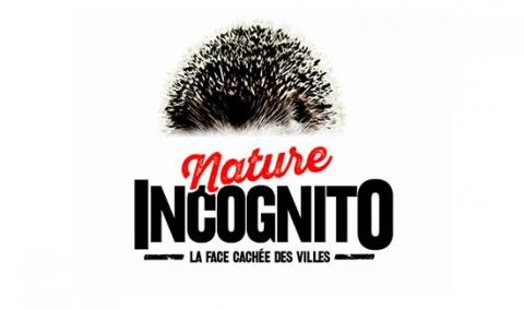 visuel-nature-incognito