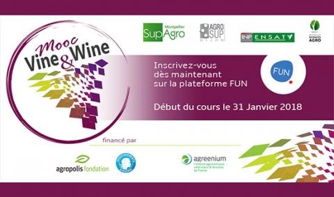 visuel-mooc-vigne-vin