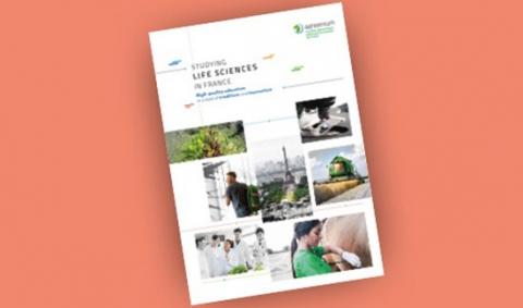 new-brochure