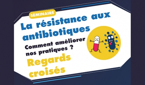 resistance-antibiotiques