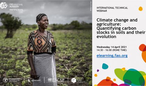 FAO webinar carbon, soils