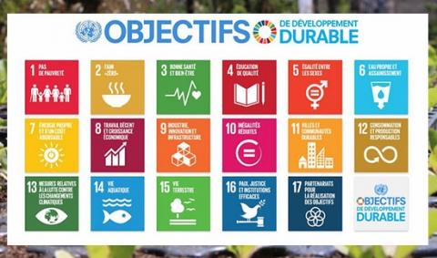 objectifs-developpement-durable